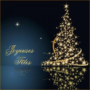 Carte-de-Noel-Joyeuses-Fetes-800x800